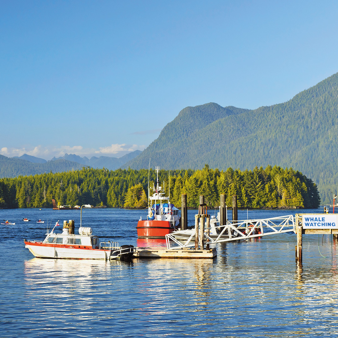 Vancouver Harbour: A Weekend In Tofino, Vancouver Island